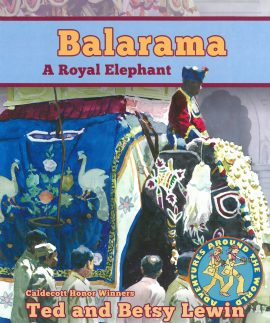Balarama A Royal Elephant